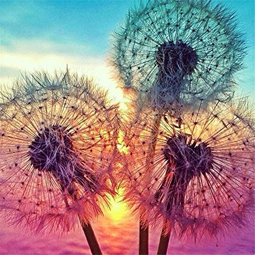 DIY 5D Diamond Painting Set Dandelion,Adults Full Drill Crystal Rhinestone Embroidery Cross Stitch by Number Kits Mosaic Canvas Arts Craft for Home Wall Decor D8221 Square Drill,60x60cm (23.6x23.6in)