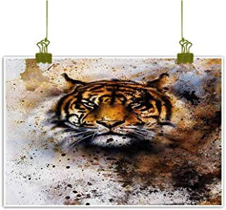 Mannwarehouse Tiger Art Oil Paintings Wild Beast Looking Straight into The Eyes of The Viewer Angry Looking Panthera Tigris Canvas Prints for Home Decorations 47