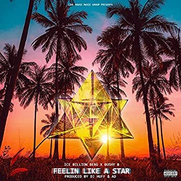 Feelin Like A Star (feat. Bushy B)
