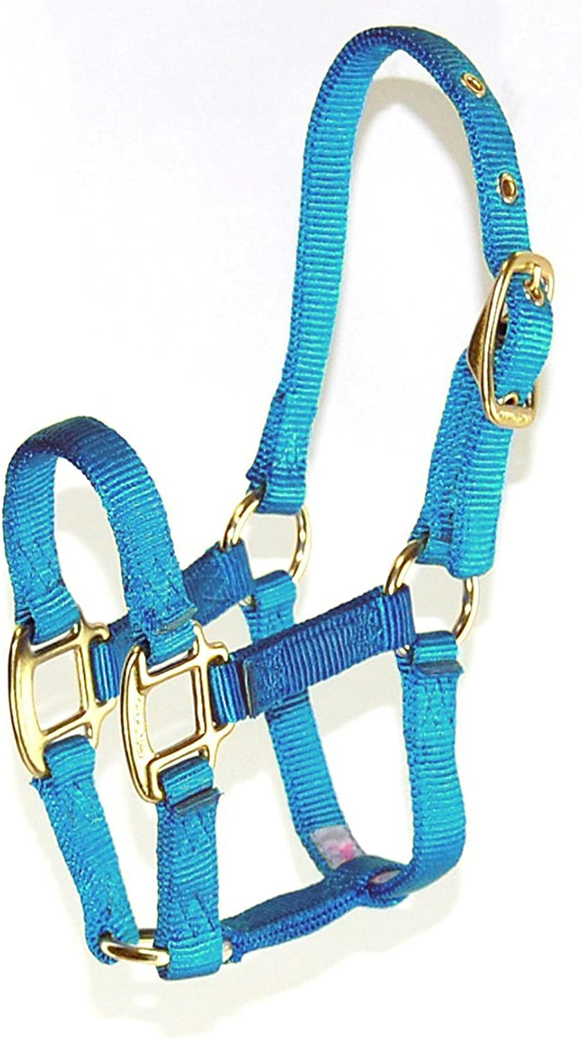 Hamilton 3D FLBY 12 3 4 Nylon Horse Halter, for 100200Pound Foals, Berry