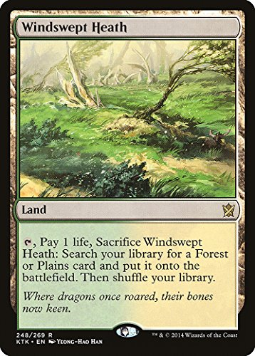 Magic The Gathering - Windswept Heath (248/269) - Khans of Tarkir