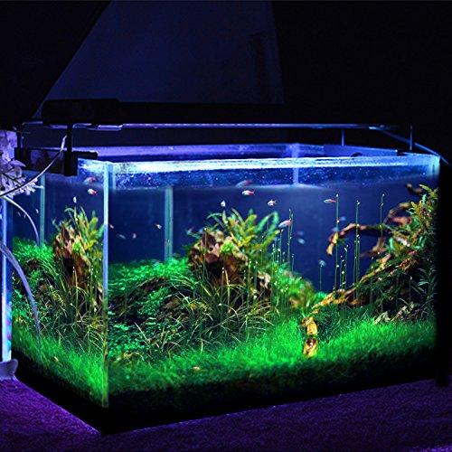 Simbr - Luces LED para acuarios y estanques, (1200 lumens, 95-115cm 144LED, Color de luz blanco y azul)