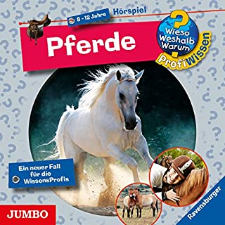 Pferde Titelbild