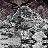 All Them Witches: Dying Surfer Meets His Maker (Audio CD)