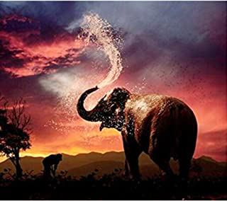 DIY Diamond Painting for Adults Full Drill Colorful Elephants Rhinestone Embroidery Pictures Cross Stitch Arts Crafts for Living Room Home Wall Decor(30X40cm)