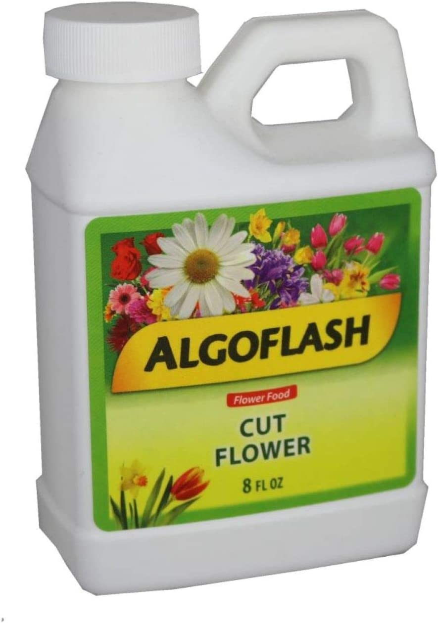 Algoflash Cut Flower - 8 oz. Life service Flowers Extend free Your The of