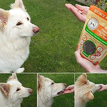 Friandises pour chiens de qualité supérieure Bounce and Bella, sans céréales