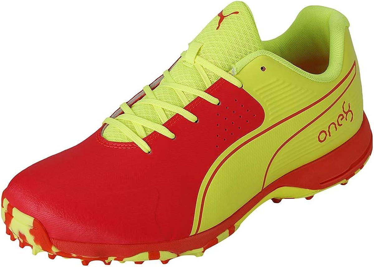 Puma Men's Sales depot Cricket Shoe