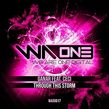 Through This Storm 9 (Extended Mix)