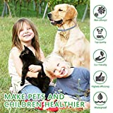 Zoom IMG-1 prozadalan collare antipulci cane impermeabile