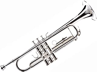 Hawk WD-T313 Bb Trumpet with Case and Mouthpiece, Silver Plated