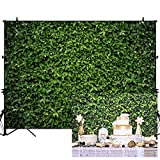 Allenjoy 7x5FT Fabric Grass Wall Photography Background Green Leaves Greenery Backdrop Spring Birthday Party Wedding Photoshoot Photo Booth Prop