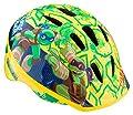 Teenage Mutant Ninja Turtle Helmet