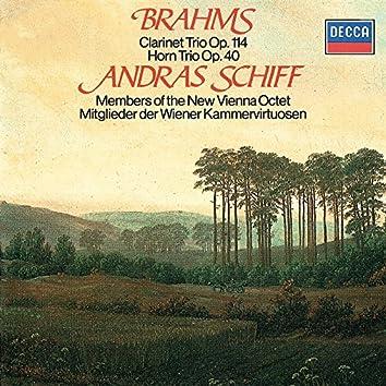 Brahms: Clarinet Trio; Horn Trio