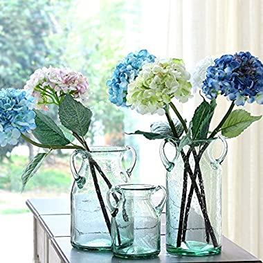 Noah Decoration Handmade and Hand-blown Double Ear Stained Bubble Flower and Filler Glass Vase for Home and Wedding Indoor and Outdoor Decoration Size Small