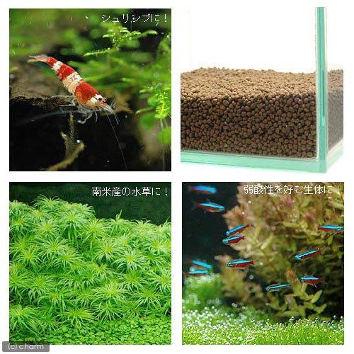 水草とシュリンプの土 こげ茶 3.3kg (約3リットル) (ノーマルタイプ) 熱帯魚 用品 ソイル