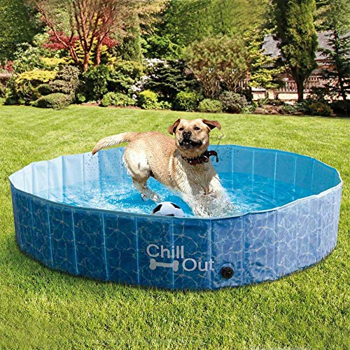 All for Paws Extra Large Dog Swimming Pool