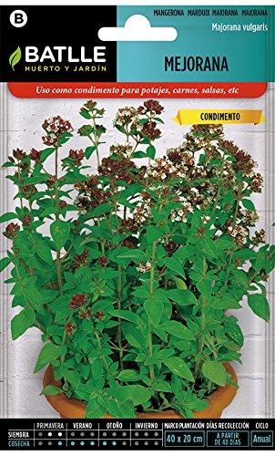 Semillas Aromáticas - Mejorana - Batlle