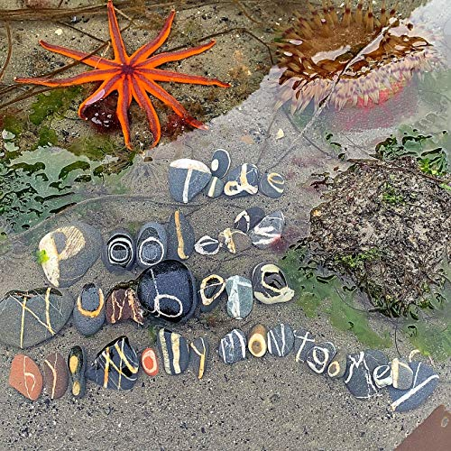 Tide Pooler's Numbers (Alphabet Rocks)