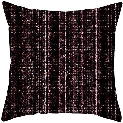 JHJFD Funda De Almohada Geometría En Blanco Y Negro Throw Pillow Case 45X45 Cm De Almohada Decorativas con Cremallera Invisible para Sofá Dormitorio (Sin Núcleo De Almohada)