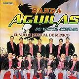 El Vuelo Musical De México