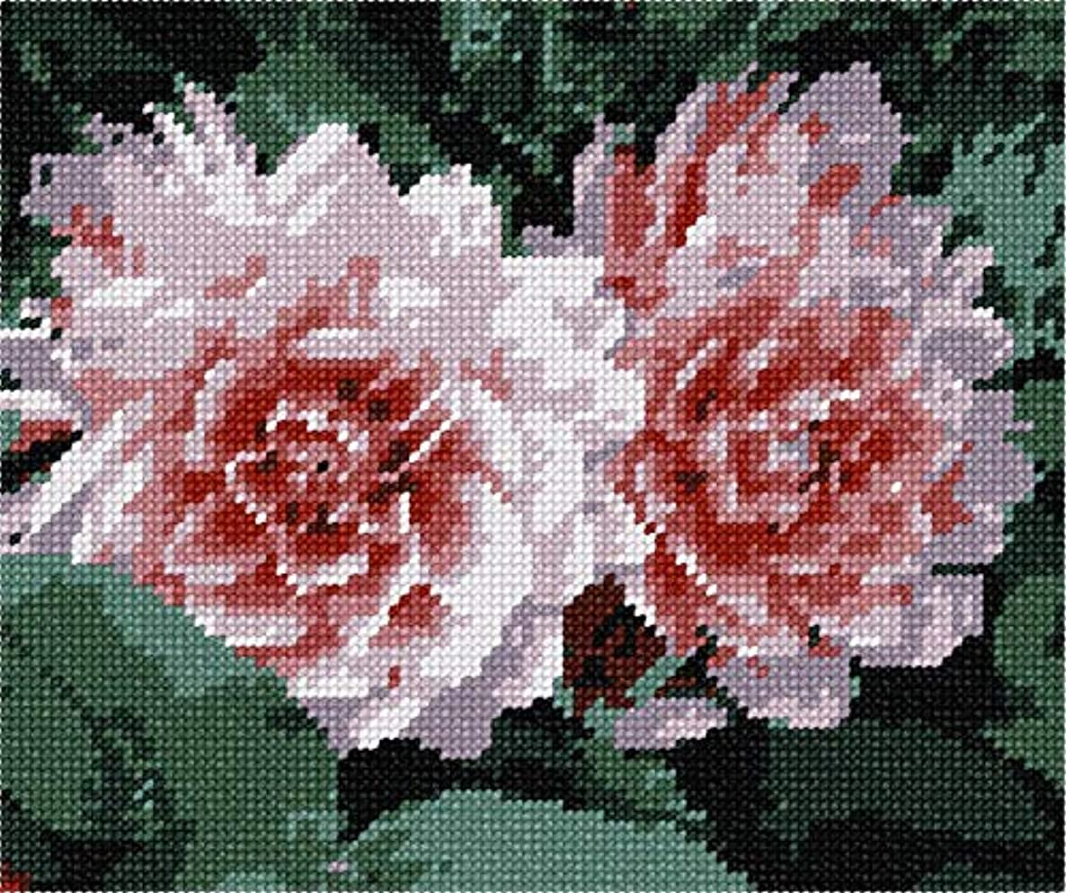 pepita Flowery Needlepoint Kit