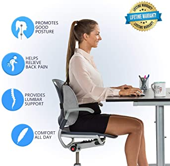 ComfiLife Lumbar Support Back Pillow Office Chair and Car Seat Cushion - Memory Foam with Adjustable Strap and Breath...