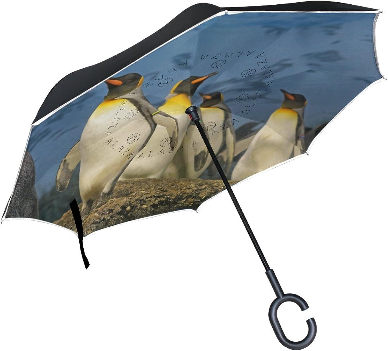LUCASE Lemon Alex Animal Beaks Bird Ingreened Umbrella, Large Double Layer Outdoor Rain Sun Car Reversible Umbrella with C Handle
