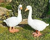 Lebensgroßes 2er Set Gartenfiguren Gans Gänse Vogel Tierfigur Teichdeko Gartenfigur WETTERFEST Gartendeko Gartentier Teichfigur