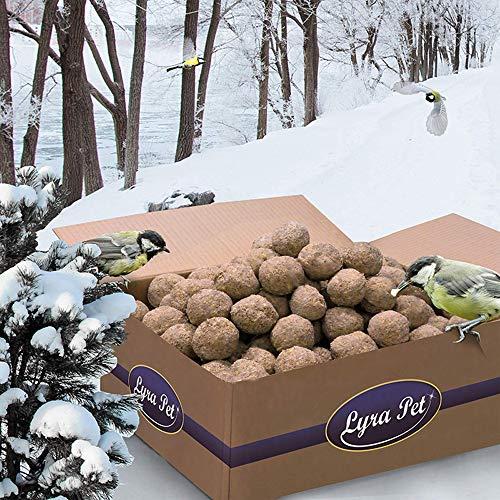 Lyra Pet® 200 x 90 g Meisenknödel ohne Netz vom Hersteller Vogelfutter Fettfutter