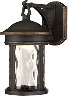 Designers Fountain EV7062-305 13 in. LED Olympic Bronze Outdoor Wall Lantern with Clear Hammered Glass Shade,