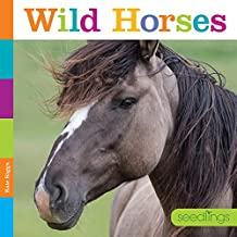 خيول برية (خياطة)