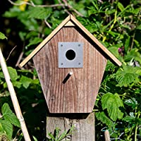 Satin stainless steel nest box plate / bird box plate 70 x 70 mm size - 32mm diameter hole - Suitable for House Sparrows and other small birds Easy to Install - Screws directly over the hole of wooden nest boxes Supplied with fixings Made in the UK