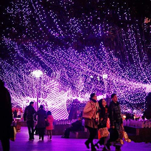 FEEE-ZC LED Mesh String Decorative Lights,Fairy net Light Garden Tree Light Indoor Outdoor Fairy Light Plug in Twinkle 8 Mode Net for Christmas Home Wedding (Color : Purple, Size : 200ft)