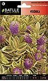 Semillas de Flores - Verónica - Batlle
