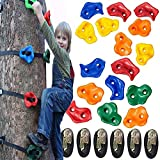 SXXJ Klettergriffe für Kinder Baumklettern mit 12 rutschfesten Handgriffen und 6 Ratschenseilen für Ninja Warrior Hindernisparcours Spielplatzzubehör für Jungen und Mädchen ab 5 Jahren-2m