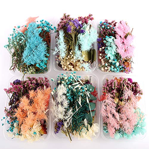 1 Box Real Natural Dried Flowers Multiple Colorful Assorted Flower for DIY Aromatherapy Candle Photo Frame Home Decoration Pendant Necklace Jewelry Filling Materials