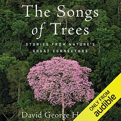 The Songs of Trees cover art