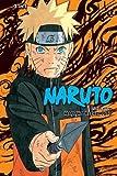 Naruto (3-in-1 Edition), Vol. 14: Includes vols. 40, 41 & 42 (14)