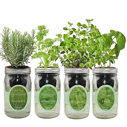 Environet Hydroponic Mason Jar Herb Seed Starter Kits - Mediterranean Herb Mix Growing Kits, Gardening Gift(Rosemary, Cilantro, Oregano, Basil)