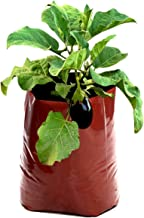 Rochfern Grow Bag (Pack of 12) Super Large for Vegetable Plants and Flowering Plants Size-60cms x 36cms X 24cms-Terracotta (12)