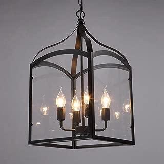 BiuTeFang Wrought Iron Glass Living Room Chandelier Coffee Shop Personality loft Vintage Restaurant Lighting Bird Cage Chandelier Lighting