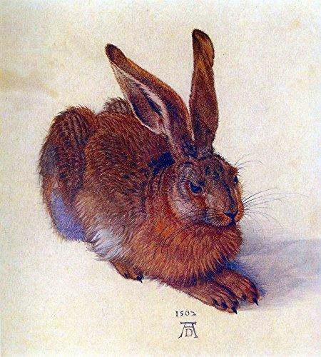Das Museum Outlet–Field Hase von Dürer, gespannte Leinwand Galerie verpackt. 29,7x 41,9cm