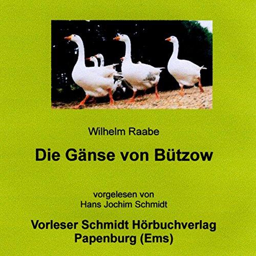 Die Gänse von Bützow Titelbild