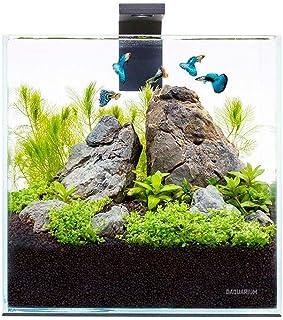 Nicepets ® – Kit de Acuario de Cristal pequeño Completo con iluminación LED y Filtro incluidos