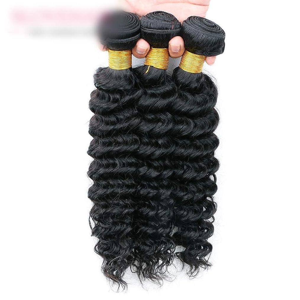 歯科のでピザYrattary ブラジルの髪の深い波100%本物の人間の髪の毛の織り方ナチュラルカラーヘアエクステンション女性のための人工毛レースのかつらロールプレイングかつら (色 : 黒, サイズ : 12 inch)