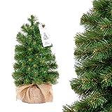 FairyTrees Mini árbol de Navidad, Abeto Nordmann versión Mini, Árbol Ideal para Mesa o Escritorio, 30 cm, FT40-30