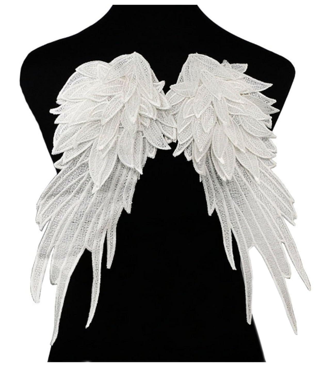 Ancefine Women Sew on Angel Wing Neckline Lace Trim Applique (Large, White)