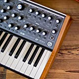 Immagine 2 subsequent 37