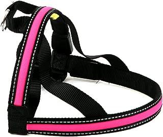 Walking Mate Soft Nylon LED Dog Harness